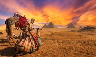 INFORMARE PLECARE EGIPT – CROAZIERA PE NIL   15.10